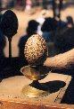 An Illuminated Egg